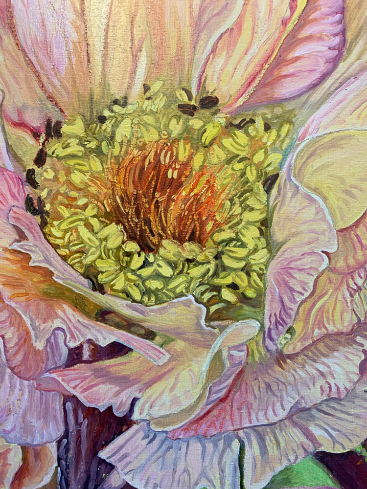 flower, seeds, petals, pinks, yellows, painting, close-up